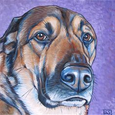 "Oliver the German Shepard Mixed Breed Dog Custom Pet Portrait Painting in Acrylic Paint on Canvas, 10"" x 10"" Order your own or give the perfect gift, shop online at: www.petportraitsbybethany.com"