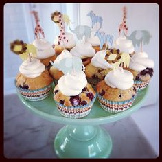 Animal parade cupcake kit from www.leilasgeneralstore.com