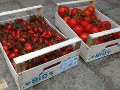 Un altro rifornimento del giovedì. #biologico #prodotti #Ventotene #alimentazione