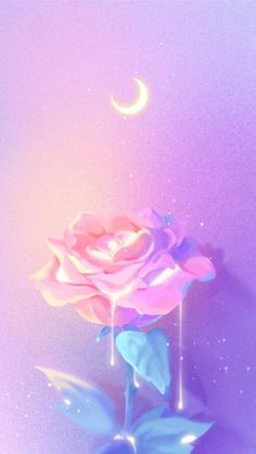 ideas flowers wallpaper quotes pink roses for 2019 Cute Wallpaper Backgrounds, Tumblr Wallpaper, Pretty Wallpapers, Aesthetic Iphone Wallpaper, Galaxy Wallpaper, Nature Wallpaper, Aesthetic Wallpapers, Wallpaper Desktop, Screen Wallpaper