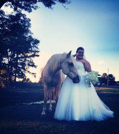 #morganviewfarm #farm #farmwedding #barn #barnwedding #outdoorwedding #weddingvenue #outdoorvenue #beautiful #beautifulwedding #weddingdecor #wedding #decor #bride #groom #vintage #vintagewedding #weddinginspiration #horse #morganhorse