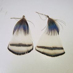 Feather Earrings lady amherst pheasant by MountainManCreations, $10.00
