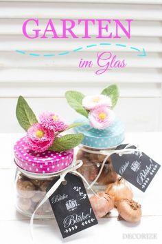 Garten im Glas - eine tolle Geschenk-Idee oder Mitbringsel zur Einladung.