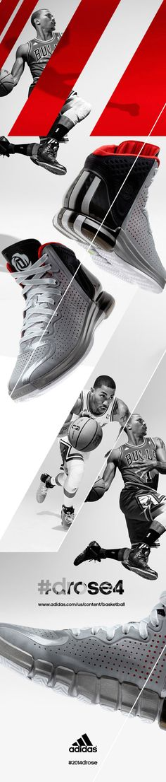 adidas sport 2 colors