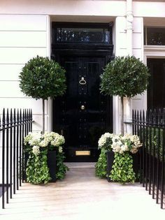 Training Your Flowering Shrubs to be Trees (and Major Garden Inspiration) Eingang The post Training Your Flowering Shrubs to be Trees (and Major Garden Inspiration) appeared first on Vorgarten ideen. Zinc Planters, Front Door Planters, Front Door Decor, Square Planters, Garden Planters, Black Planters, Bay Tree Front Door, Tree Planters, House Entrance