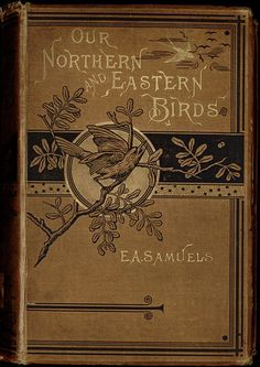 1883 From the digital collection Publishers' Bindings Online  Description Brown diagonal-rib-grain cloth with gold and black stamping on front and spine. Cream endpapers printed with a tan floral-and-vine pattern on a tan scalloped background pattern. Beveled edges. Top gilt.