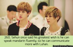 Sehun and Luhan. Is this not just the cutest thing ever?? #EXO #hunhan