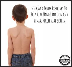 Neck and Trunk Exercises Help with Hand Function and Visual Perceptual Skills from Your Therapy Source. Pinned by SOS Inc Resources at www.pinterest.com/sostherapy/