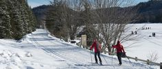 Cross-Country Skiing and Snowshoeing in The Laurentians | Tourisme Laurentides
