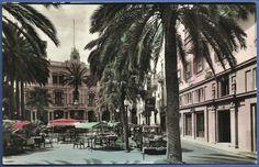 """167 """"LAS PALMAS DE GRAN CANARIA. Plaza Cairasco""""."""