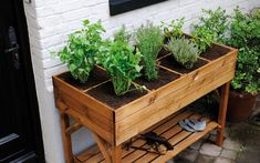 23 Ideas Garden Boxes Elevated Herbs For 2019 Vertical Pallet Garden, Herb Garden Pallet, Pallets Garden, Vegetable Garden, Planting Vegetables, Garden Boxes, Growing Herbs, Trees To Plant, Planting Flowers