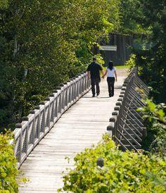 36 sites de randonnee-pedestre-Mauricie Plein Air, Railroad Tracks, Hiking, Walking Paths, Ride Or Die, Drill Bit, Adventure, Vacation, Walks
