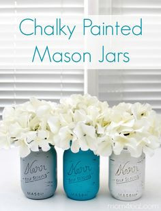 I grabbed some plain glass jars at Michaels the other day, pulled out some of my chalky paint, and got to work making my version of Chalky Painted Mason Jars. Mason Jar Projects, Mason Jar Crafts, Mason Jar Diy, Large Mason Jars, Bottles And Jars, Glass Jars, Perfume Bottles, Lohals, Crafts To Make