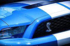 2012 Ford Mustang Shelby GT500 - by Gordon Dean II