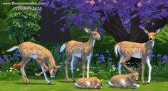 Roe as decor by Granny Zaza at The Sims Models via Sims 4 Updates Check more at http://sims4updates.net/objects/decor/roe-as-decor-by-granny-zaza-at-the-sims-models/