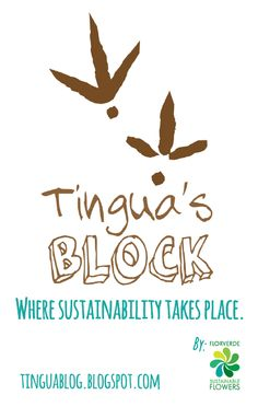 Welcome to the blog of the Tingua! were sustainability and nature takes place! #blogs #wildlife #flowers