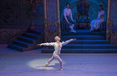Cascanueces 2014. Ballet de Santiago. Foto: Patricio Melo