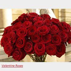 risultati immagini per rose rosse immagini | rose rosse, Ideas