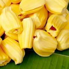 How Jackfruit Kills Cancer. This title hardly left any doubt that jackfruit (Artocarpus heterophyllus Lam) is effective in curing cancer. Jackfruit Recipes, Jackfruit Ideas, Cancer Fighting Foods, Cancer Cure, Healthy Fruits, Saturated Fat, The Cure, Vegetarian Diets, Health Benefits