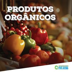 Os produtos orgânicos são cultivados sem agrotóxicos e sem fertilizantes químicos. Por isso, eles são saudáveis e seu plantio não agride a terra, matendo-a viva e fazendo bem a nossa saúde e ao solo. Escolha produtos orgânicos, sua saúde agradece :) #ProAtiva #ProdutosOrgânicos #Saúde #Natureza #Terra #Solo #Brasil