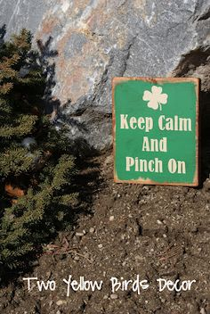 Keep Calm and Pinch On...St. Patrick's Day Decor