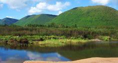 The Dingwall Highlands, Cape Breton. Nova Scotia Tourism, Cabot Trail, Cape Breton, Adventure Tours, Travel And Leisure, Highlands, Photo Galleries, Canada, Island