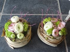 renoncules spring bergamote-fleurs