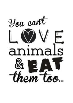 don't be a hypocrite: Be a true Animal lover #GoVegan and fight FOR them