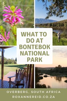 10 things to do at the Bontebok National Park - Roxanne Reid