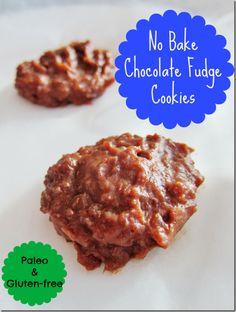 no bake chocolate fudge cookies