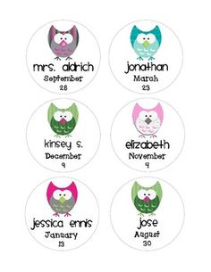 Complete Owl Birthday Bulletin Board