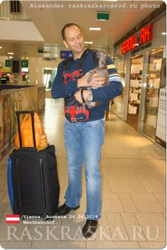 Dogs in Vienna. Italian Greyhound, Man And Dog, Dog Photos, Vienna, Small Dogs, Austria, Street Fashion, Long Sleeve Shirts, Street Style