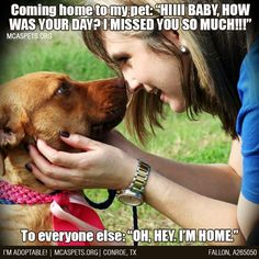 This is SO me, lol #mcaspets #lifewithpets #funnydogs