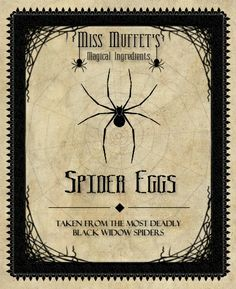 witch potion bottle labels for eggs - Google Search