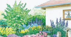 Aus einer öden Rasenfläche im Schatten einer  Blaufichte  wird ein  repräsentativer Vorgarten. Die Pflanzpläne für beide Gestaltungsideen können Sie als PDF-Dokument herunterladen.