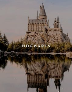A wizarding school also called a magical school was an educational institution which provides magical instruction to young witches and wizards.