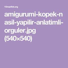 amigurumi-kopek-nasil-yapilir-anlatimli-orguler.jpg (540×540)