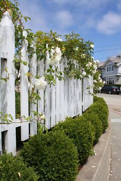 White picket fence with flowers.