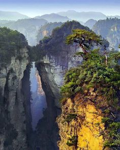 It's hard to believe that this is planet Earth Zhangjiajie National Forest Park, China is part of Zhangjiajie - More memes, funny videos and pics on Landscape Photography, Nature Photography, Travel Photography, Christmas Photography, Photography Workshops, Photography Projects, Photography Backdrops, Color Photography, Digital Photography