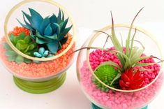 DIY Neon Footed Terrariums using faux succulents and air plants - Hot Pink - Neon Orange - Turquoise and gold - Colorful Terrariums - DIY Terrariums - Quick Craft - DIY Gift Diy Gifts To Make, Diy Crafts For Gifts, Kids Crafts, Diy Ombre, Terrarium Diy, Diy Nagellack, Mini Vasos, Diy Presents, Easy Diy Crafts