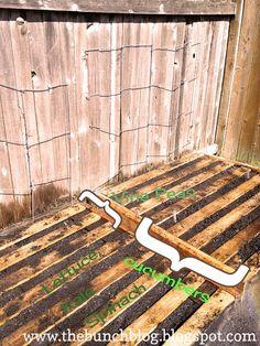 DIY Pallet Veggie Garden- Free Container Garden 101