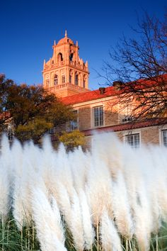 Spanish Renaissance-style architecture can be found all over  Texas Tech University.