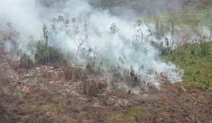 Enam Pesawat Masih Siap Siaga Padamkan Karhutla di Riau
