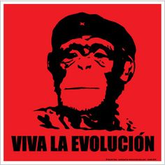 """Viva La Evolucion It's the Planet of the Apes. Or Che Guevara. Or Charles Darwin Poster is 12"""" x 12"""""""