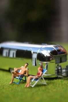 In the sun, Macro Photography, miniatures