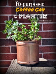 See how to easily repurpose those empty plastic coffee cans into cute planters, even suitable enough for porch decor! Quick. Easy. CUTE! #TaylorMadeHomestead