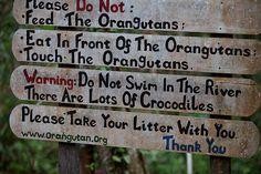 A signboard at Tanjung Puting National Park, Central Kalimantan, Indonesia.  by RarePlanet