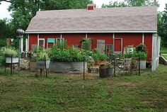 garden yard with old stock tanks as raised bed containers