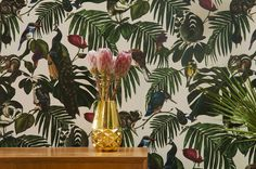 Amazonia Light Wallpaper : Wallpaper by Witch and Watchman