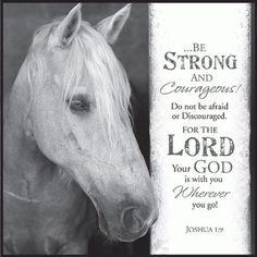 Be Strong and Courageous Horse Joshua 12 x 12 Inch Wood Wall Art Sign Plaque Scripture Verses, Bible Verses Quotes, Bible Scriptures, Healing Scriptures, Faith Bible, Cowboy Quotes, Cowgirl Quote, Inspirational Horse Quotes, Inspirational Message